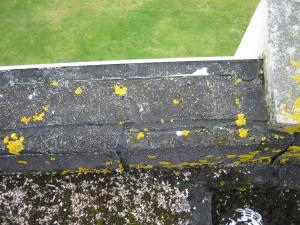 Split parapet covering